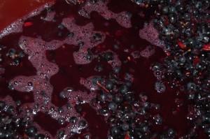 fermentacion-freitas-ingenieria